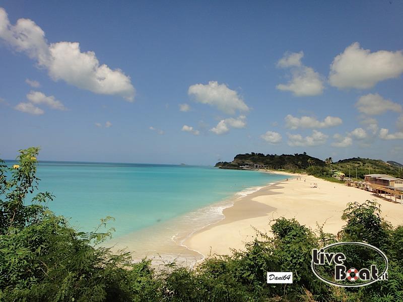 Antigua (Antille) 14/01/2011-dsc01782-jpg