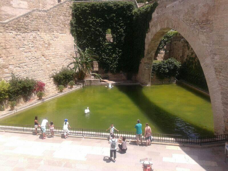 2014/06/09 Palma di Majorca overnight MSC lirica-uploadfromtaptalk1402324847894-jpg