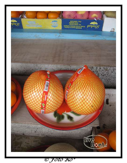 Fujairah 27/02/10-img_7966-jpg