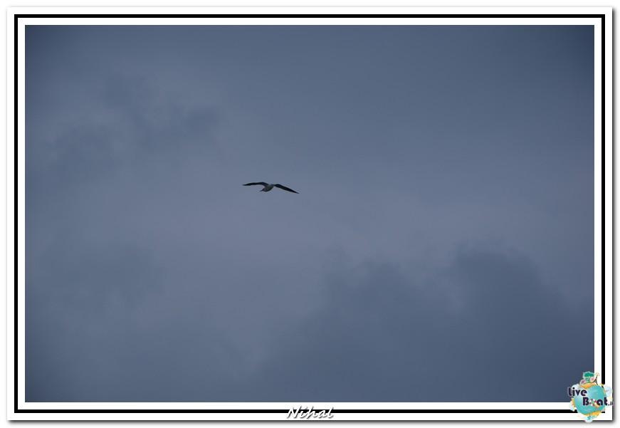 """Costa Classica """"Terre Sacre e Isole nel blu"""" 30/09-07/10/12-liveboat_ancona_18-jpg"""