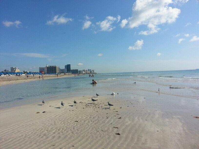 2014/06/16 Orlando + RCI Majesty ots + Miami-uploadfromtaptalk1403421641089-jpg
