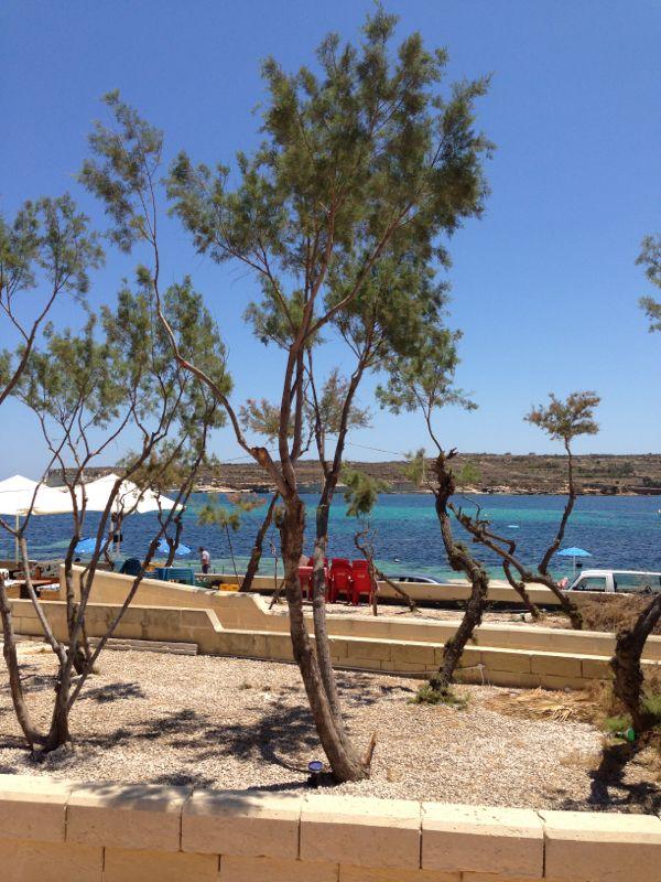 2013/06/14 Malta-escursione-malta-diretta-liveboat-3-jpg