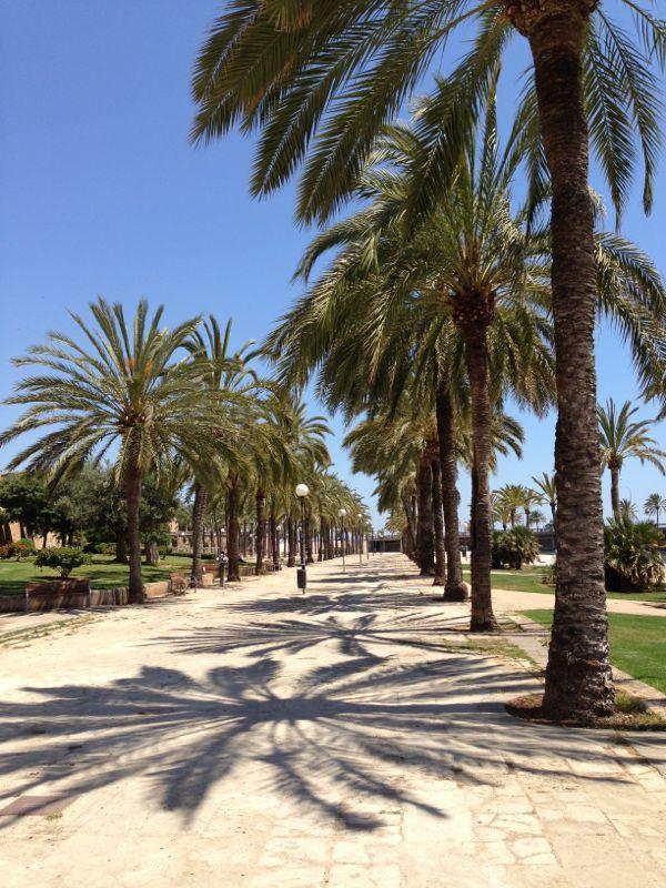 2013/06/12 Palma de Majorca-diretta-liveboat-palma-majorca-costa-favolosa-35-jpg