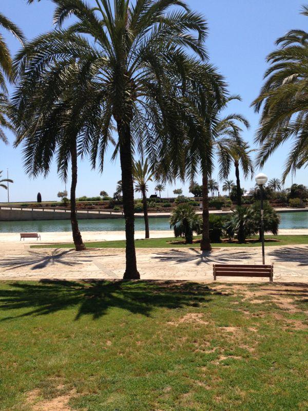 2013/06/12 Palma de Majorca-diretta-liveboat-palma-majorca-costa-favolosa-38-jpg