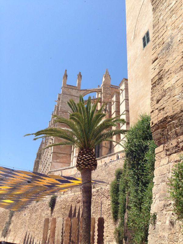 2013/06/12 Palma de Majorca-diretta-liveboat-palma-majorca-costa-favolosa-51-jpg