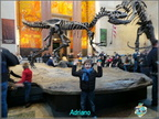 Museo di Scienze Naturali di NEW York